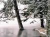 cerne-jezero_04