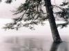 cerne-jezero_08