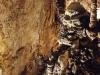 grotta-gigante-39