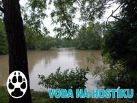 hostivar-001