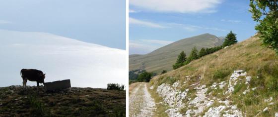 Monte Baldo_11