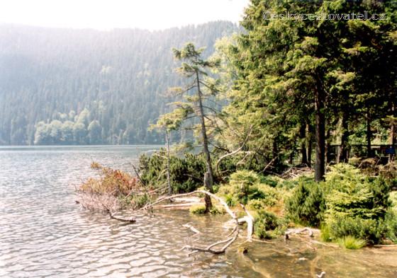 cerne jezero_105